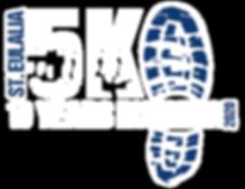STE-Final-Logo-2020-White.png