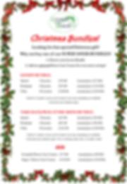 christmas bundles.png
