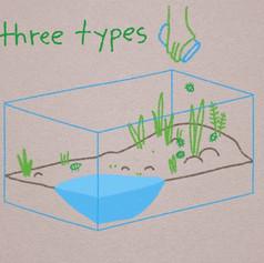 three types