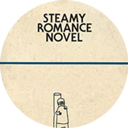 steamy romance novel