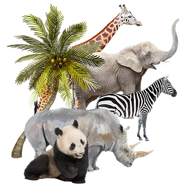 BiSE-web-animals_edited.png