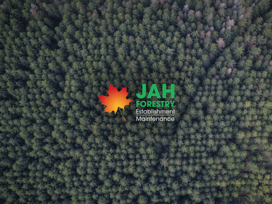 JAH Forestry – promotional showreel and documentary work.