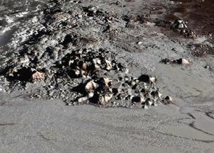 Ученые впервые составили полную карту поверхности Плутона и Харона