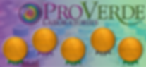ProVerde-From-PDF.png