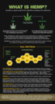 What-is-HEMP-14-Wix-Web.png