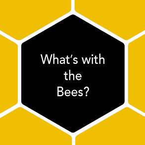 What's with the Bees?  Like so many others, we feel they are crucial to our planet, which is why we donate 5% of our profits to bee education and conservation efforts.