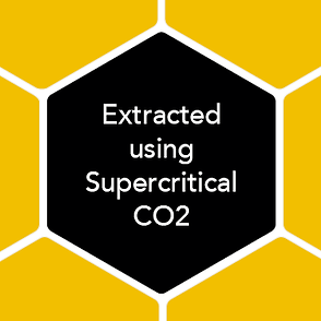 Extraced using Supercritical CO2 for bio-availability, zero solvents or harsh bitter taste.