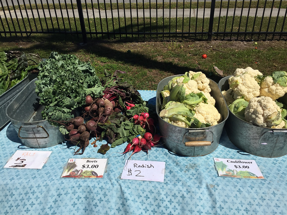 Buckets of beets, radish, cauliflower, and greens sold at the market.