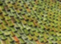 roofingc.jpeg