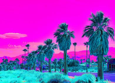 North Palm Canyon Drive