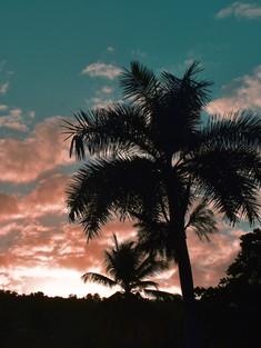 El Yunque Sunset