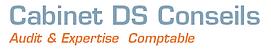 Logo DS CONSEILS.bmp