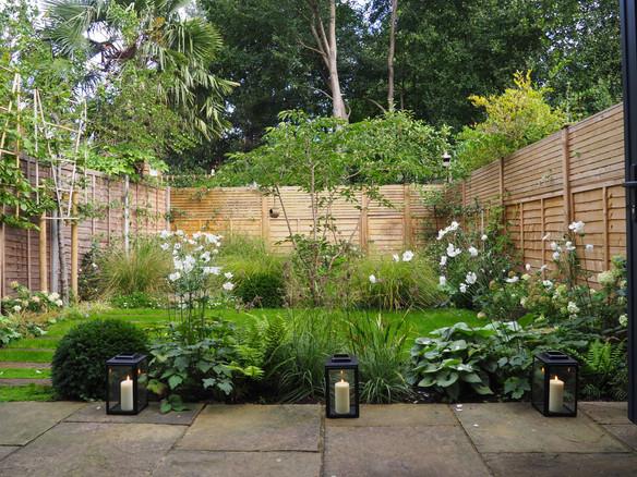 Taryn Ferris Garden Design - Prunus x yedoensis multistem tree, Taxus baccata, Anemone x hybrida 'Honorine Jobert', Luzula nivea, Brunnera 'Jack Frost' - Tuffnell Park Family Garden