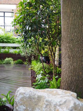 Taryn Ferris Garden Design - Purbeck stone boulders and multi-stem Photinia 'Red Robin' - Victoria Park Garden Planting