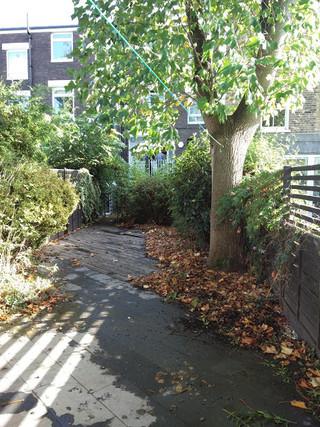 Taryn Ferris Garden Design - before photograph - Victoria Park Garden Planting
