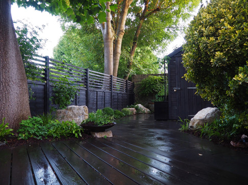 Taryn Ferris Garden Design - Purbeck Stone Boulders, Black Stain Timber Fence, and Evergreen Planting - Victoria Park Garden Planting