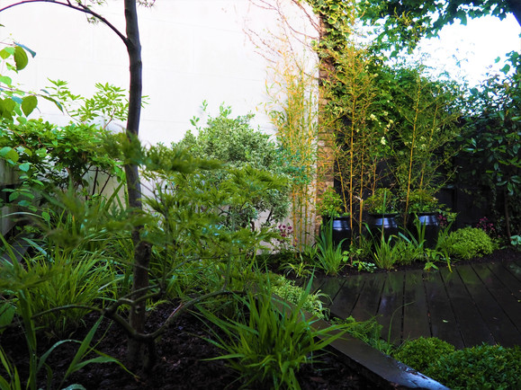 Taryn Ferris Garden Design - Hakonechloa macra grass, Phyllostachys screening and feature pots - Victoria Park Garden Planting