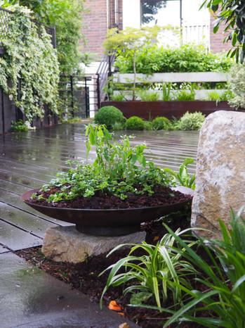 Taryn Ferris Garden Design - Purbeck Stone Boulders, Corten Steel Shallow Planter, and Evergreen Planting - Victoria Park Garden Planting