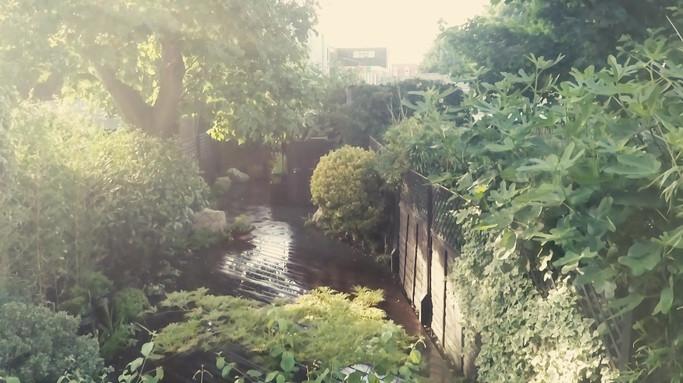 Taryn Ferris Garden Design - (Video credit Adam Azmy) - Victoria Park
