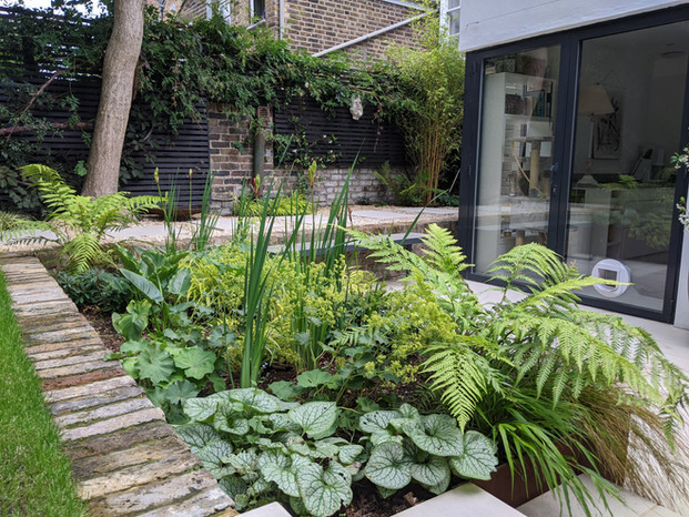 Taryn Ferris Garden Design - Contemporary Shade-Tolerant Planting - De Beauvoir Town