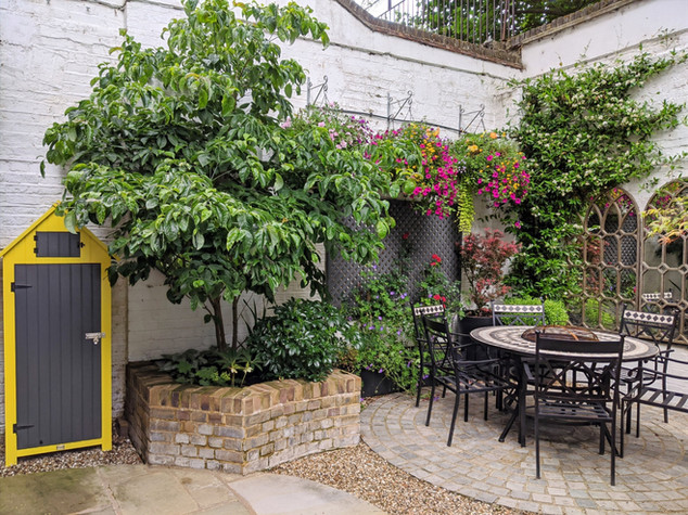 Taryn Ferris Garden Design - Yellow Trim Shed, Cornus florida Tree  - City Road Courtyard Garden