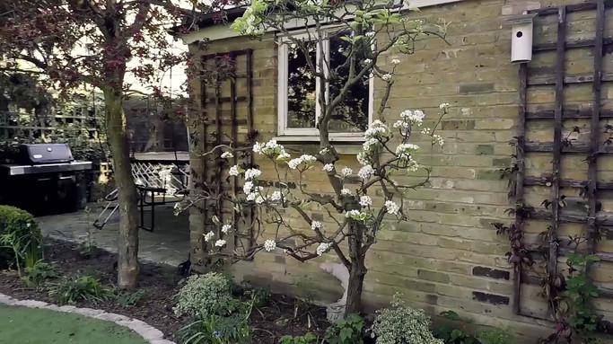 Taryn Ferris Garden Design - (Video credit Adam Azmy) - Highbury Hill