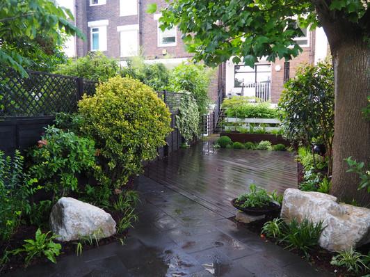 Taryn Ferris Garden Design - Purbeck Stone Boulders and Geometric Evergreen Planting - Victoria Park Garden Planting