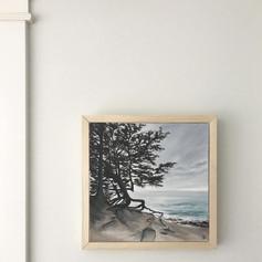 Lone Tree, Shore Acres | sold