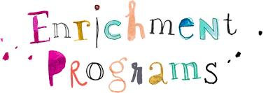Virtual Enrichment - Mini Sessions are Here!