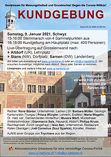 Schwyz Ankündigungsflyer v1 ico.jpg