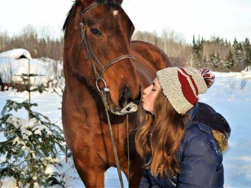 Horseback Riding in Ontario Canada