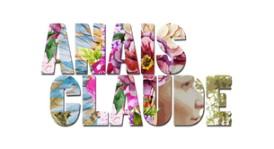 AnaIs Claude création site internet Illico Perso personnalisation tous supports la bresse communication visuelle