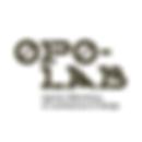 opolab_porto.png