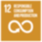 sustainable development goals circular w