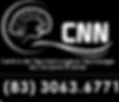CNN CG.png