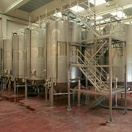 fermentacionbodega.jpg
