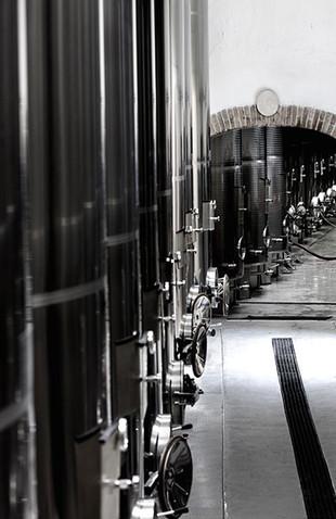 diL-Der-Weinkeller-2.jpg