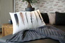 living room pillow
