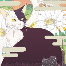 猫とサボテン