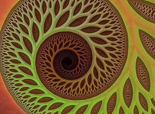 meditation active 3.jpg