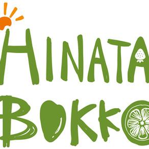八百屋「HINATA BOKKO」 ロゴ・イラスト