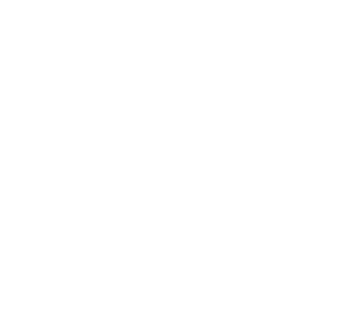 candidate-statement.png