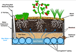 Wicking-Bed-Diagram-Cross-Section