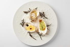 Fine dinning oysters in modern style.jpg