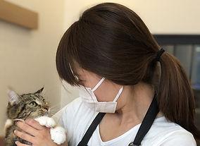 catsitter.jpg