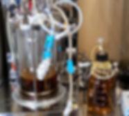 柏の葉 実験写真 (2).jpg