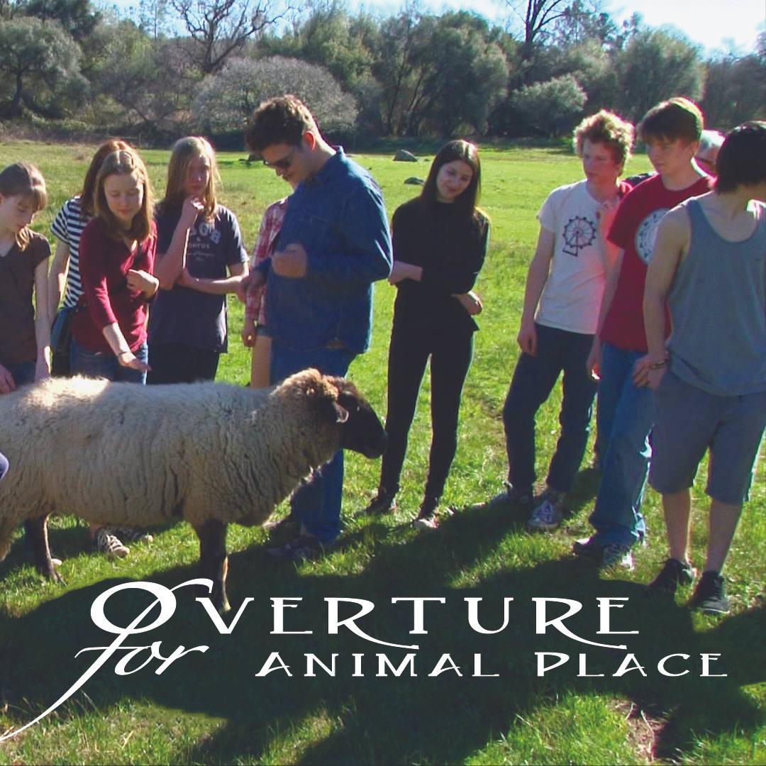 Animal Place and YCP partnership 2014-15