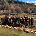 2020 Composers Project and Sierra Harvest partnership