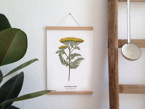 "Botanic Kunstdruck ""Scharfgabe"""