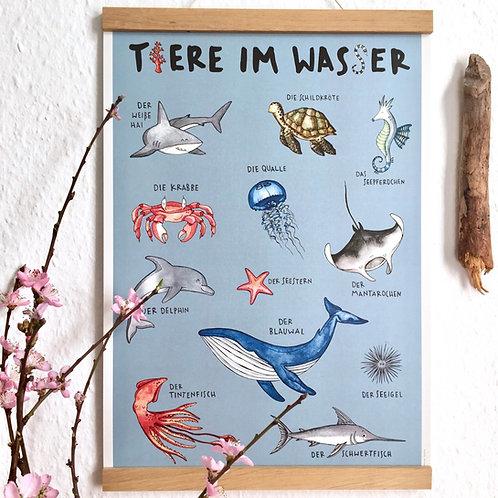 "Poster ""Tiere im Wasser"" Recyclingpapier"